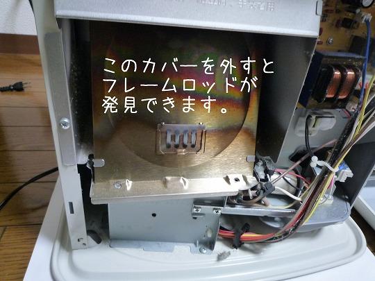 P1090306.jpg