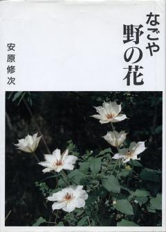 なごや野の花