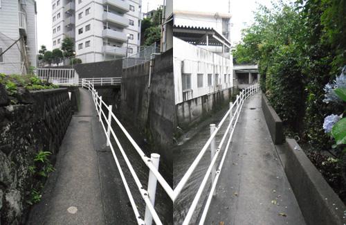 雨の細道2