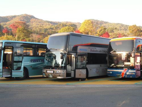 こんなバスに乗っていきました。