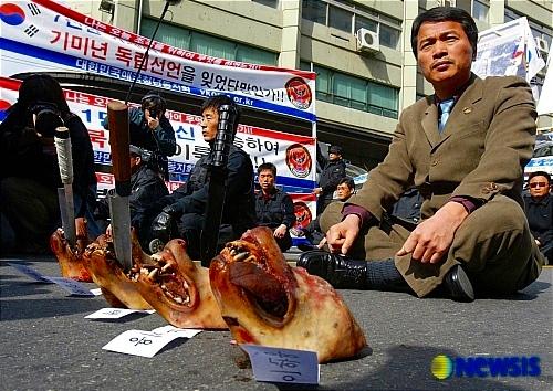 反日韓国人と犬の頭