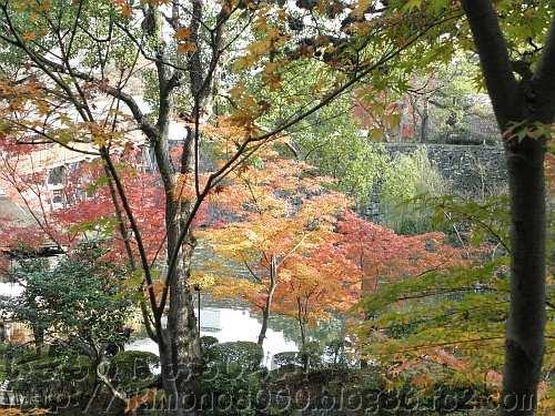 紅葉とお堀