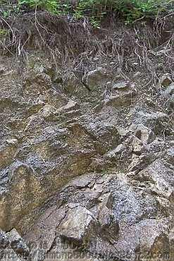 奥の堰堤付近は岩盤が見えます