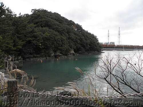 和歌山県立自然博物館近くの海