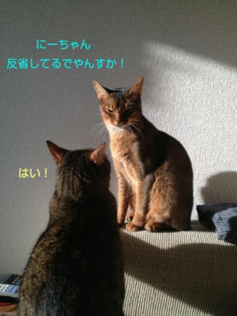 20130314_200206.jpg
