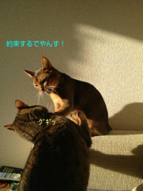 20130314_201110.jpg