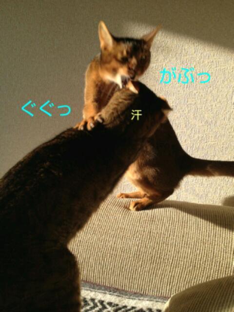 20130319_070115.jpg