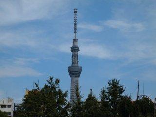 20120906東京スカイツリー