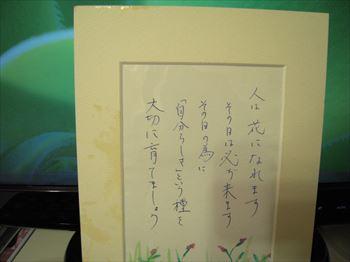 KOKORONOSASAE_R.jpg