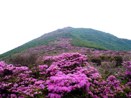 6 大戸越から平治岳南峰