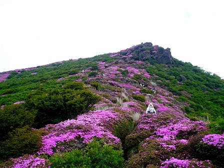 14 平治岳本峰へ