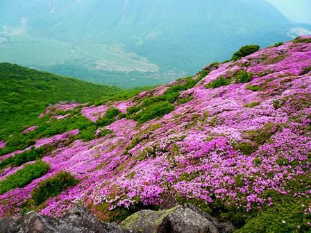 17 平治岳本峰先端