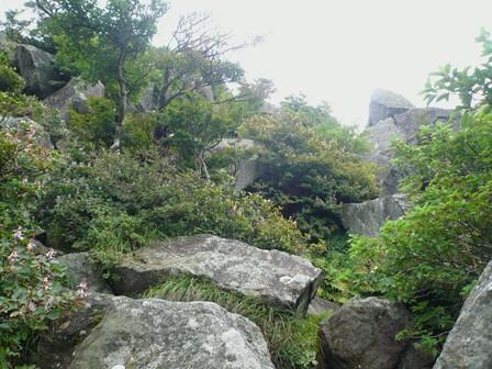 天狗岩への登山道