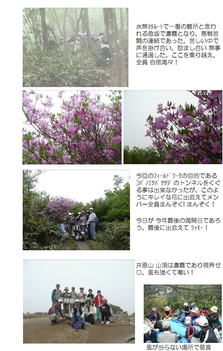 2012.05.10井原山2
