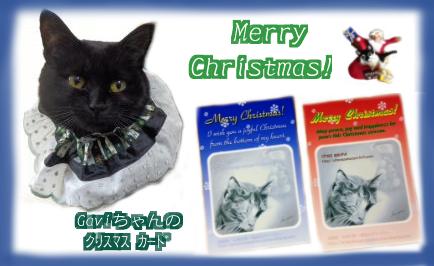 Gaviちゃんところで買った クリスマスケープとGaviちゃんのクリスマスカード