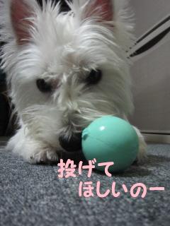 再編集_2012-08 018