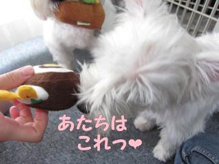 再編集_2012-08 054