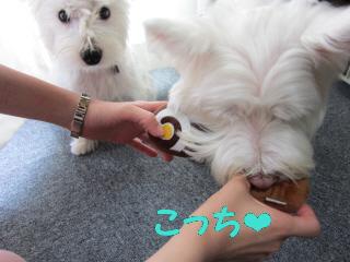 再編集_2012-08 050