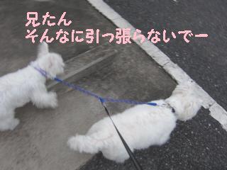 R_052.jpg