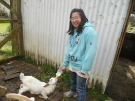Renon & milking goat