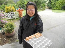 Renon-up-egg