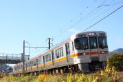 2012.11.08 213M 313系 カキB151