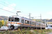 2012.11.08 1420M 313系 カキR115