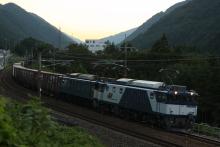 鉄道写真にチャレンジ!-2011.09.08 81レ EF64-1013 + EF64-10?? + コキ