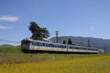 鉄道写真にチャレンジ!-飯田線 228M 115系 ナノN32
