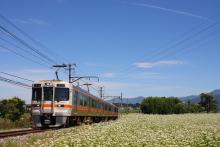 鉄道写真にチャレンジ!-飯田線 313系 七久保