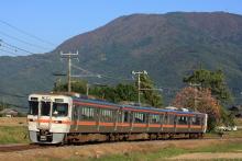 鉄道写真にチャレンジ!-飯田線 313系