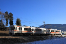 鉄道写真にチャレンジ!-飯田線 222M 313系 R101