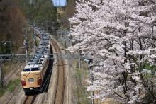 鉄道写真にチャレンジ!-183・189系と桜 富士見