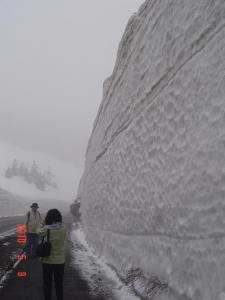 雪の回廊⑩