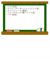 9/24花の解説