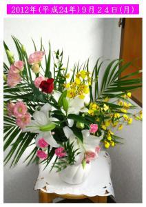 9/24花の写真