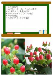 10月1日の花 (2)
