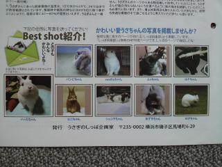 011_20121004100117.jpg