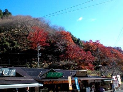 吉野駅・チラチラ紅葉