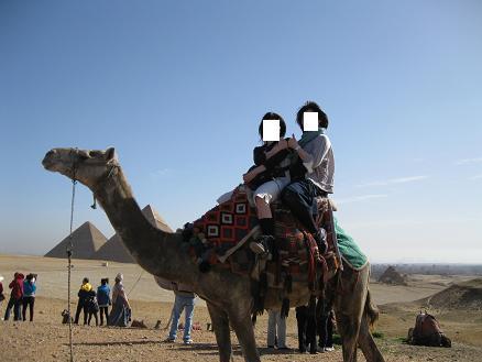 エジプト旅行:ギザの3大ピラミッド ラクダ②