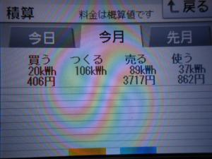 DSCN1012_convert_20130603055020.jpg