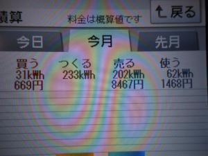DSCN1014_convert_20130604203803.jpg