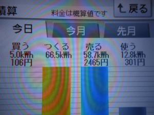 DSCN1015_convert_20130604203835.jpg