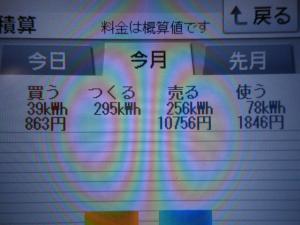 DSCN1017_convert_20130605211600.jpg
