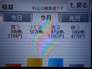 DSCN1038_convert_20130612062819.jpg