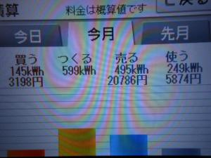 DSCN1051_convert_20130616052711.jpg