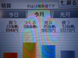 DSCN1094_convert_20130629194838.jpg
