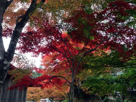 2012-11-10_15-45-58_000.jpg