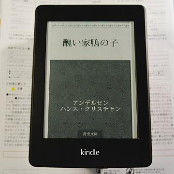 KindlePW-1.jpg