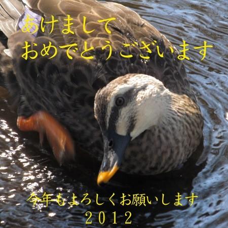 (^・^)  の  ブ ロ グ-2012-nenga